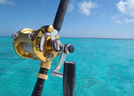 Discover phuket scuba diving